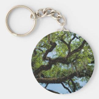 Savannah Live Oak And Spanish Moss Keychain