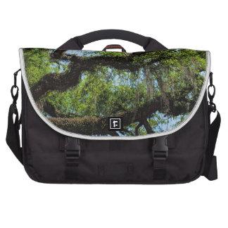 Savannah Live Oak And Spanish Moss Laptop Commuter Bag