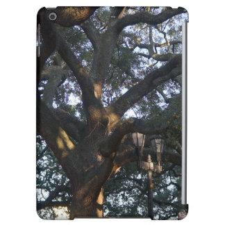 Savannah Oak Cover For iPad Air