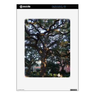 Savannah Oak Decal For The iPad