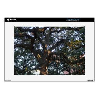 Savannah Oak Skin For Laptop