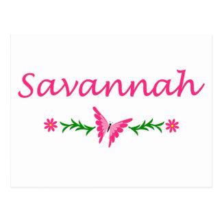 Savannah (Pink Butterfly) Postcard