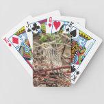 Savannah Sparrow Poker Cards