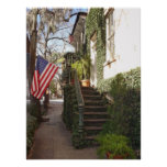 Savannah Staircase Framed Print