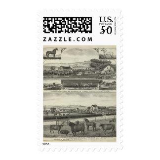 Savannah Stock Farmand Residences, Kansas Postage