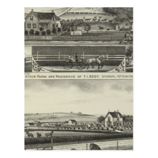 Savannah Stock Farmand Residences, Kansas Postcard