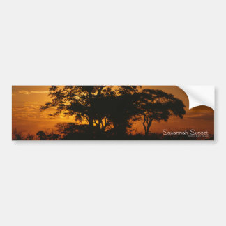 Savannah Sunset Bumper Stickers