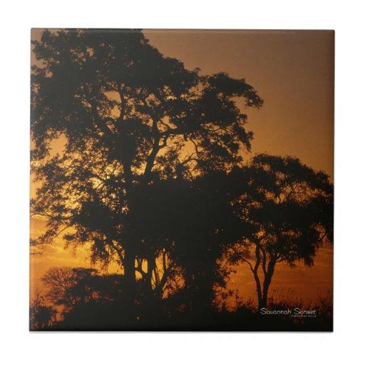Savannah Sunset Ceramic Tile