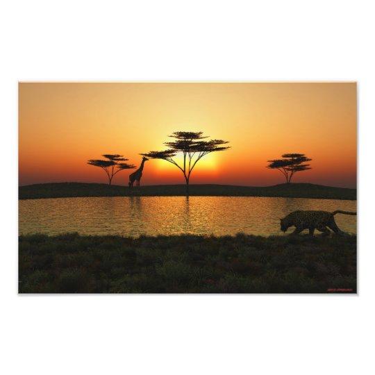 Savannah Sunset Photoprint Photo Print