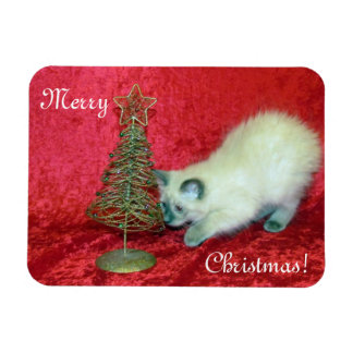 Savannah's Christmas Magnet ( Cat Kitten Rescue)