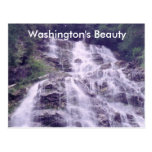Save0011, Washington's Beauty Post Card