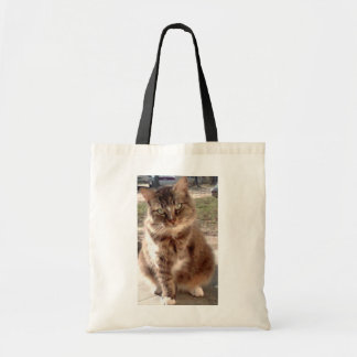 Save a cat, Save the planet Canvas Bag