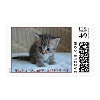 Save a life, adopt a rescue cat postage stamp