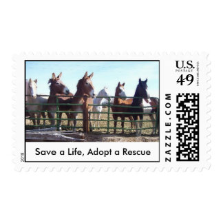 Save a Life, Adopt a Rescue Postage