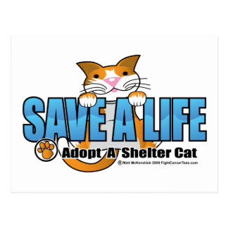 Save A Life: Adopt A Shelter Cat Postcard