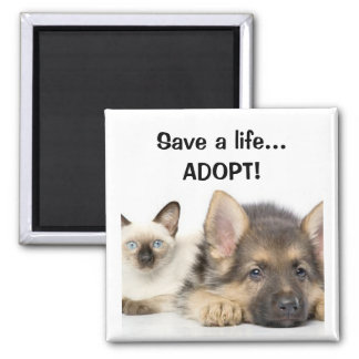 Save a life... ADOPT! Magnets