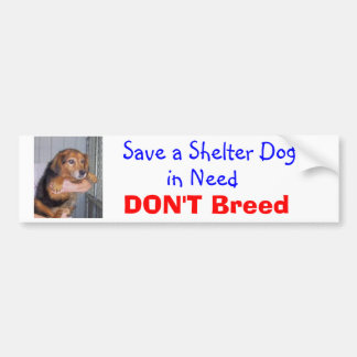 Save a Shelter Dog in Need -- Paxton Car Bumper Sticker