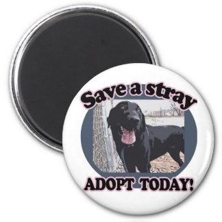 Save a Stray, Adopt Today 2 Inch Round Magnet