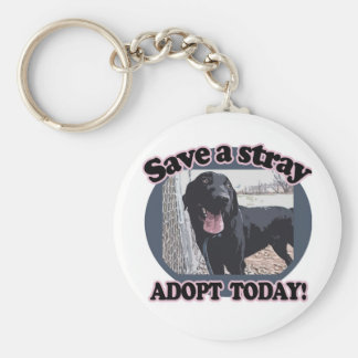 Save a Stray, Adopt Today Keychain