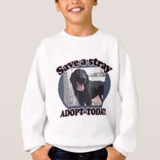 Save a Stray, Adopt Today Sweatshirt