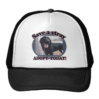 Save a Stray, Adopt Today Trucker Hat