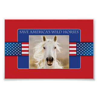 Save America s Wild Horses Poster