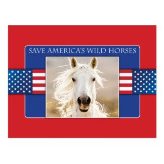 Save America's Wild Horses Postcards