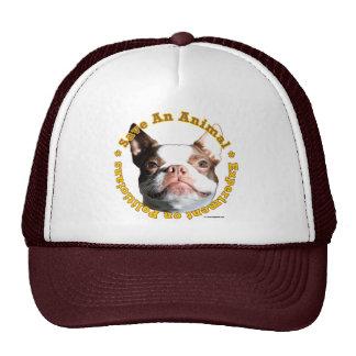 Save An Animal-Dog Hat