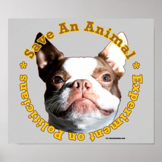 Save An Animal-Dog Poster