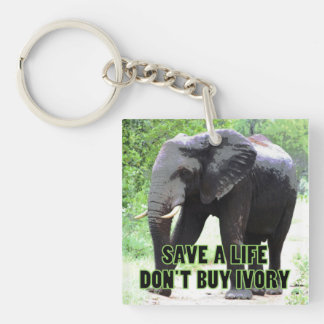 Save an Elephant's Life, Don't Buy Ivory Keychain