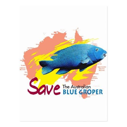 save blue groper postcard