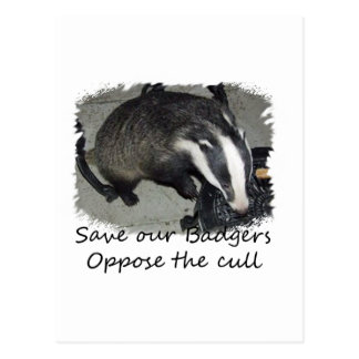 Save British Badgers oppose the badger cull Postcard
