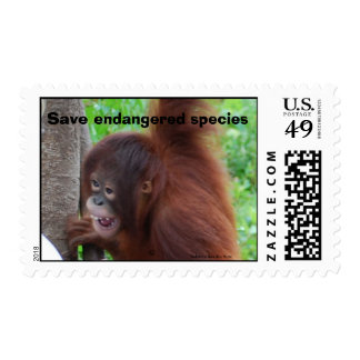 Save Endangered Species Borneo Jungle Trips Stamp