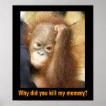 Save Endangered Wildlife Orphan Orangutan Poster