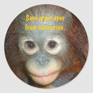 Save Great Ape Endangered Species Classic Round Sticker