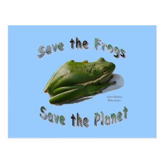 Save Green Treefrogs Postcard