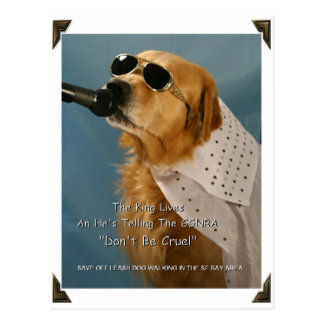 Save Off-Leash Dog Walking Congresswoman Pelosi Postcard