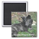 SAVE OUR GREY WOLVES Wildlife Black Wolf Pup Refrigerator Magnets