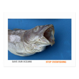 Save our oceans, stop overfishing postcard