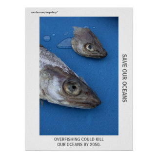 Save our oceans, stop overfishing poster