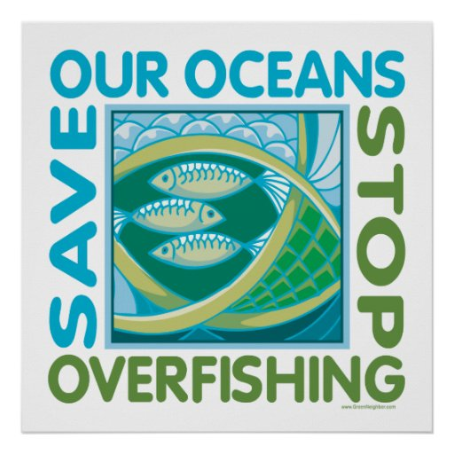 are the oceans being overfished essay Overfishing and global warming land cod on endangered list where overfished stocks disappeared in 1992 and have and quotas for catches being fixed too.