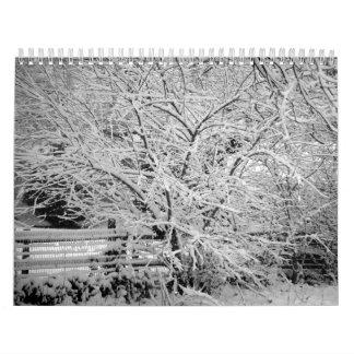 Save Our Planet 2011 Calendar
