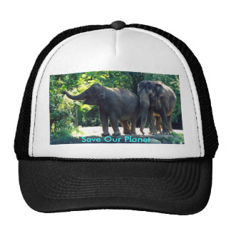 Save Our Planet hat