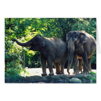 Save Our Planet notecard featuring elephants