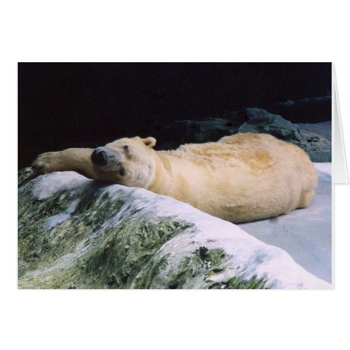 Save Our Planet series Polar Bear note card