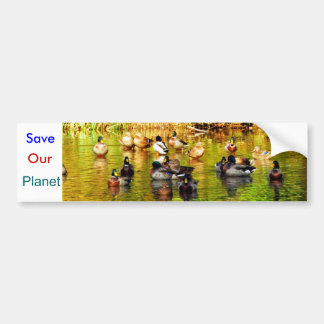 """Save Our Planet """"Waterfowl"""" bumper sticker"""