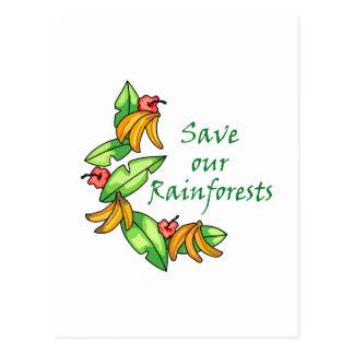 Save our Rainforests Postcard