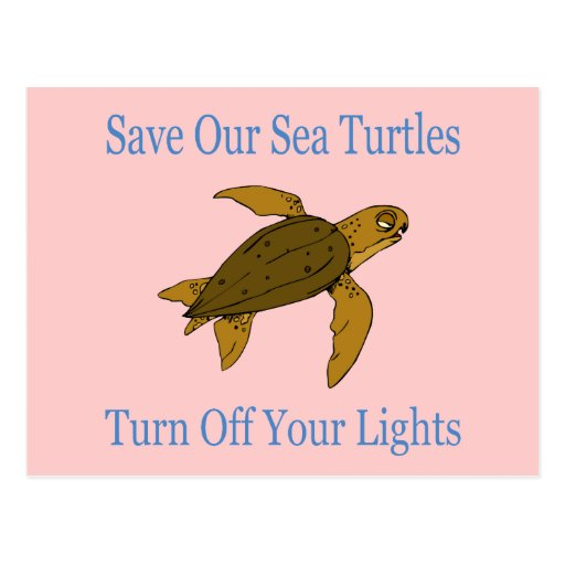 Save Our Sea Turtles blue Postcard