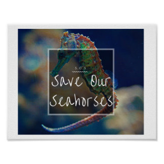 Save Our Seahorses Poster