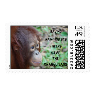 Save Rainforest Orangutans Postage Stamp